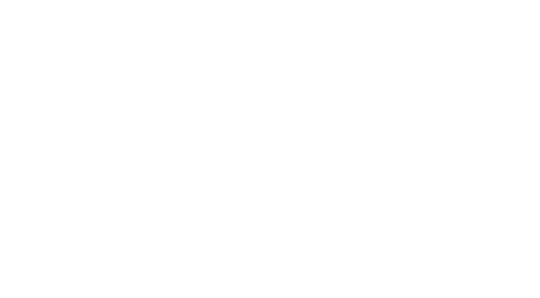 drone wireframe